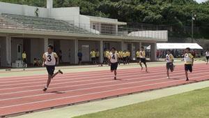 校内陸上競技大会の様子